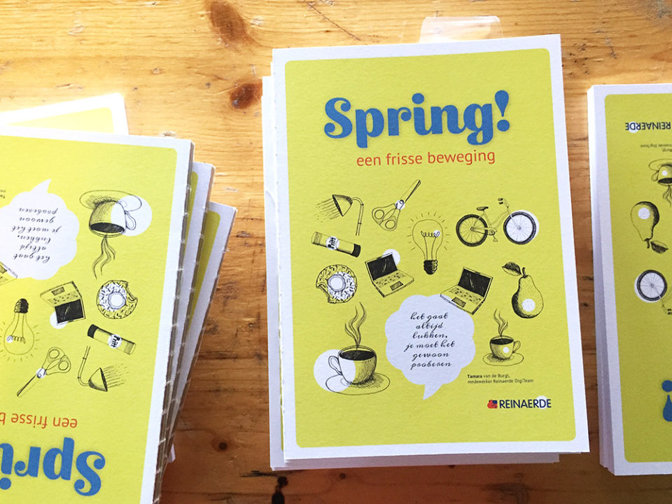 nulzet_book-spring